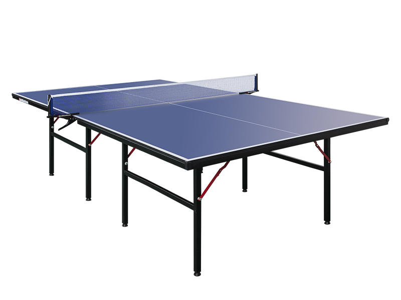 Indoor Table Tennis Table/PingPong table XP501